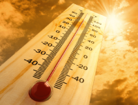 thermometer__large