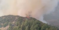 wildfire_ccr_2020