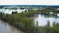 Climate Change Toll on Oregon