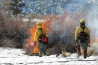 Prescribed_Fire4.wildfire-protection