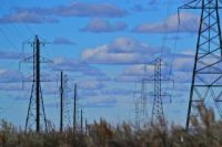 Two rows of transmission towers.