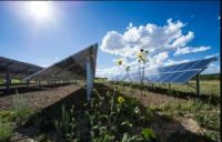 CCR Alliant Energy Plans to Add Six Solar Projects in Wisconsin