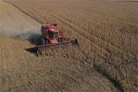 Big_Agriculture_Is_Leading_to_Ecological_Collapse