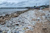 Half_of_single_use_plastic_waste_produced_by_just_20_companies