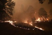 forest_fire_ccr