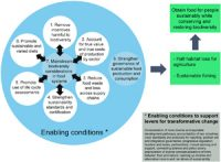 Actions_on_sustainable_food_production_and_consumption_for_the_post_2020_global_biodiversity_framework