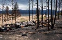 Burned trees and structuctures left by the East Troublesome Fire