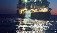 CCR Seaspiracy shows why we must treat fish not as seafood, but as wildlife