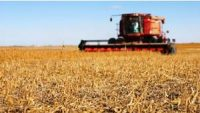 CCR Tackling climate challenge through food and agricultural innovation