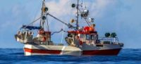 CCR Technology to deliver sustainable fisheries