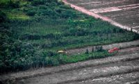 peatlands for agriculture_ccr