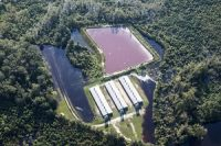 A hog farm in Vanceboro, N.C. is surrounded by floodwater