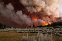 CCR California hit by record-breaking fire destruction: 'Climate change is real, it's bad'