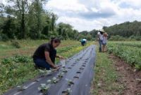 CCR Farmer Co-ops Are Giving Latinx Communities Room to Grow