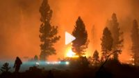 CCR The Bootleg Fire in Oregon is so large, it's creating its own weather