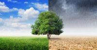 Uphill climb possible Climate Solutions Act approved in Senate