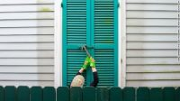 In New Orleans, storm shutters are hammered closed as the city prepares for Ida.