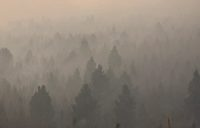 In this Aug. 11, 2021 file photo smoke from a wildfire obscures a stand of trees on the Northern Cheyenne Indian Reservation, near Ashland, Mont. In southeastern Montana