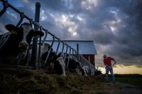 Fran Miron, pictured on his Hugo, Minn., farm in 2019, is among the many farmers who objected to the Obama administration's expanded regulation of waterways